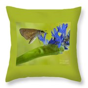 Climb Up For Lunch Throw Pillow