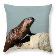 Climbing Out Throw Pillow