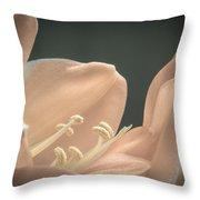 Clivia Miniata Throw Pillow