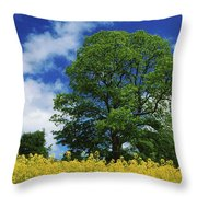 Clonmel, County Tipperary, Ireland Throw Pillow
