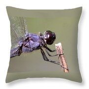 Close And Blue Throw Pillow