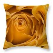 Close Curls Throw Pillow