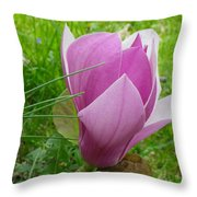 Close To The Ground Throw Pillow