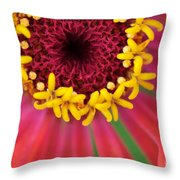 Close Up Dahlia Throw Pillow