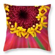 Close Up Dahlia Throw Pillow