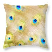 Close Up Of A Peacock Tail Throw Pillow