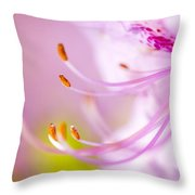 Close Up Of A Pink Flower Throw Pillow