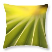 Close Up Of A Plant On The Island Throw Pillow