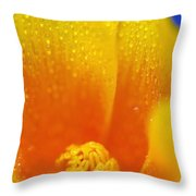 Close Up Of A Poppy With Dew On The Throw Pillow