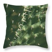 Close-up Of A Prickly Pear Cactus Throw Pillow