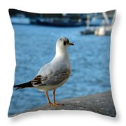 Close Up Of A Tern Next To The Thames And London Eye Throw Pillow