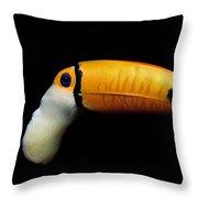 Close-up Of A Toucan Throw Pillow