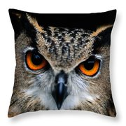 Close Up Of An African Eagle Owl Throw Pillow