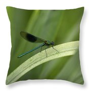 Close-up Of Dragonfly Perched On Leaf Throw Pillow
