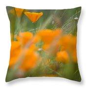 Close Up Of Orange Poppy Flowers Throw Pillow