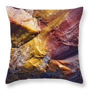 Close Up Of Petrified Wood, Petrified Throw Pillow