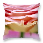 Close Up Of Rose Showing Petal Detail Throw Pillow