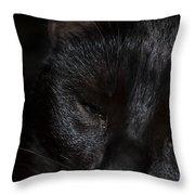 Close-up Of Satin Throw Pillow