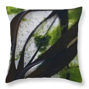 Close-up Of Seaweed In Water Throw Pillow
