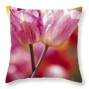 Close-up Of Tulips Throw Pillow