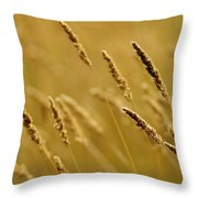 Close-up Of Wheat Throw Pillow