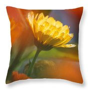 Close-up Of Wildflower Throw Pillow