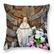 Close Up Shrine Throw Pillow