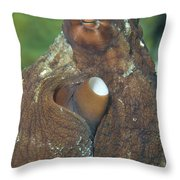 Close-up View Of A Common Octopus Throw Pillow