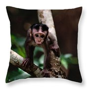Close View Of A Baby Macaque Throw Pillow