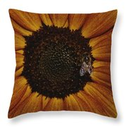 Close View Of A Bee On A Sunflower Throw Pillow