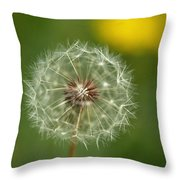 Close View Of A Dandelion Gone To Seed Throw Pillow