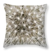 Close View Of A Dandelion Seed Head Throw Pillow