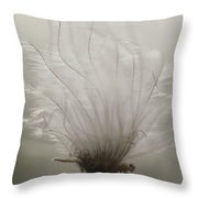 Close View Of A Feathery Seed Pod Throw Pillow