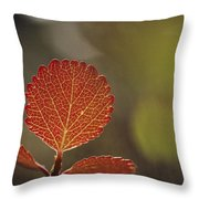 Close View Of A Leaf Throw Pillow