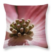 Close View Of A Pink Dogwood Blossom Throw Pillow