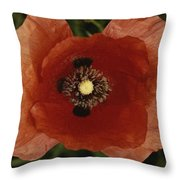 Close View Of A Poppy Throw Pillow