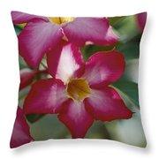 Close View Of A Tree Blossom Flute Throw Pillow