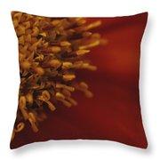 Close View Of A Zinnia Throw Pillow