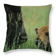 Close View Of An American Bison Throw Pillow