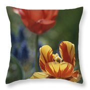 Close View Of Blossoming Tulips Throw Pillow