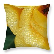 Close View Of Dew On Olympic Gold Rose Throw Pillow