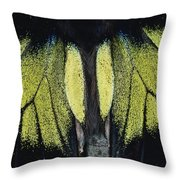 Close View Of Iridescent Moth Wings Throw Pillow