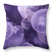Close View Of Jellyfish Throw Pillow