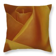 Close View Of Olympic Gold Rose Throw Pillow