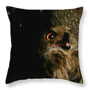 Close View Of Owl Near A Tree Trunk Throw Pillow