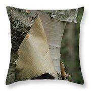Close View Of Paper-birch Bark Throw Pillow