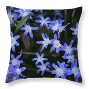 Close View Of Spring Flowers Throw Pillow