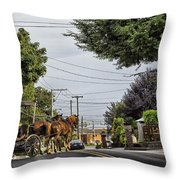Closed On Sundays 2 - Amish Country Throw Pillow