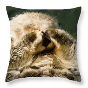 Closeup Of A Captive Sea Otter Covering Throw Pillow