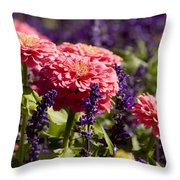 Closeup Of Colorful Flowers In Butchart Throw Pillow